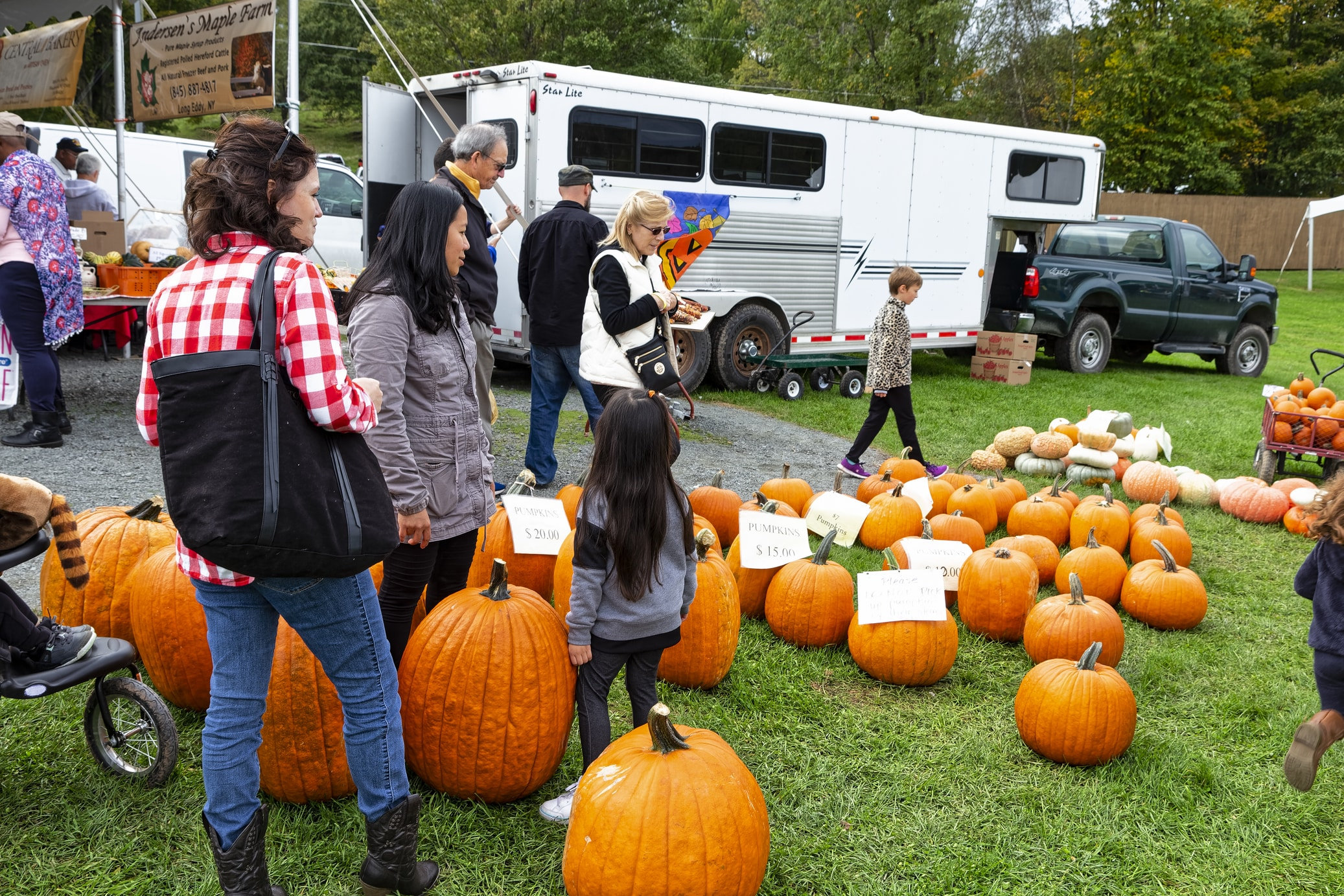 Fall events like Harvest Fests are so much fun!