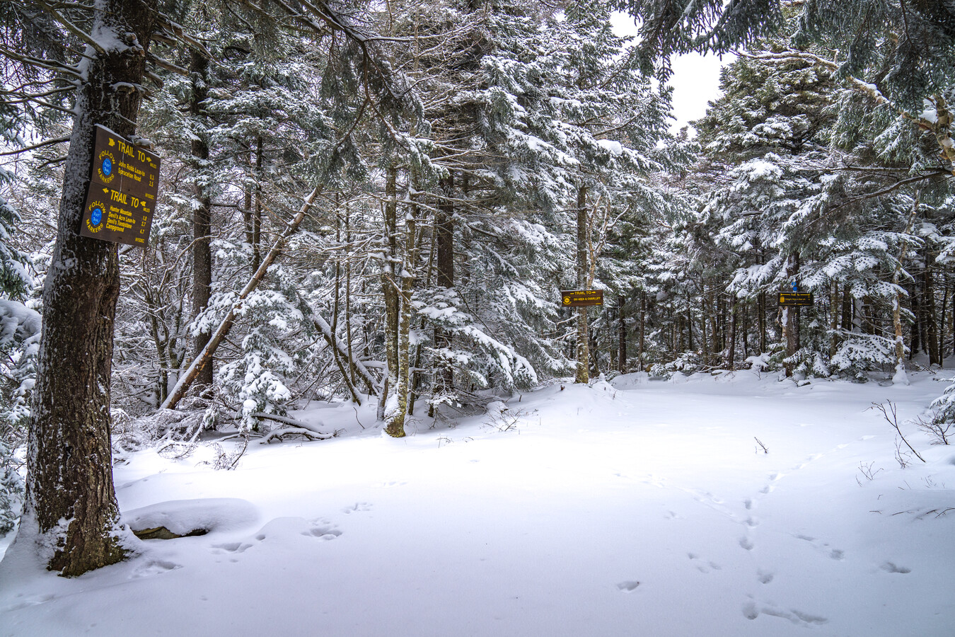 Winter snow covered hiking trial